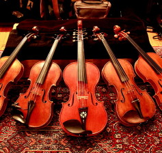 800px-FIDDLES!_-_Jay_Haide,_Joseph_Collingwood,_Salve_Håkedal,_Stefano_Scarampella,_Stefano_Conia